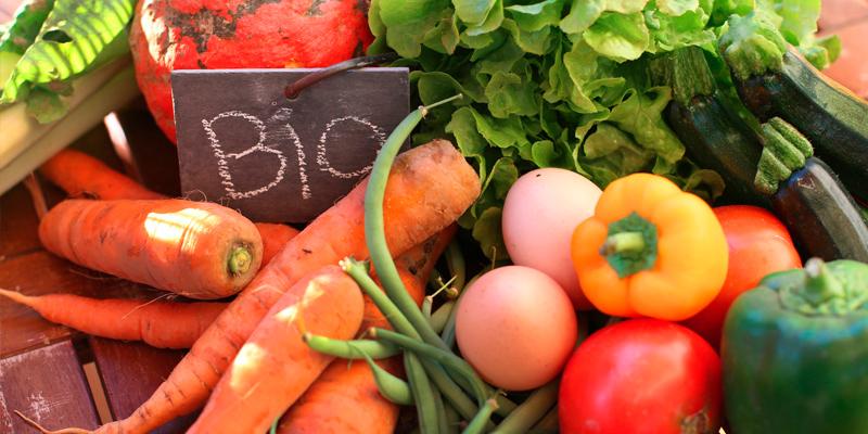 Consumo de productos vegetales