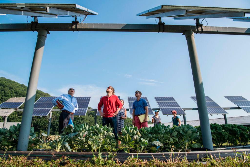 Instalación fotovoltaica en una comunidad energética local.