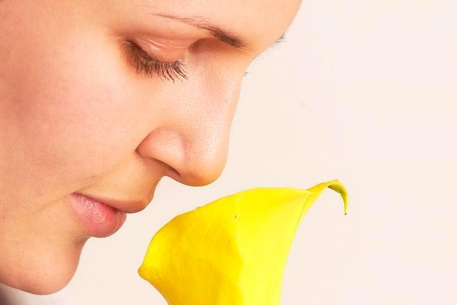 El olfato, único sentido en contacto directo con el cerebro emocional.
